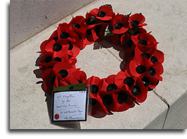Remembrance Day poppies, London UK
