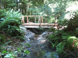 The Bridge, Bellingham, Washington USA -- Ana Gobledale