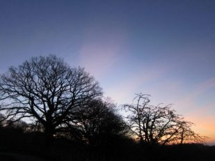 Sunrise on Orrest Hill, Windermere, Cumbria -- Ana Gobledale