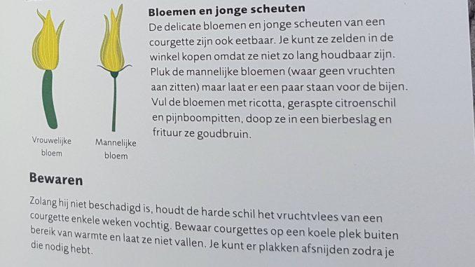 Bladzijde over courgette uit het Groen(t)e Boekje