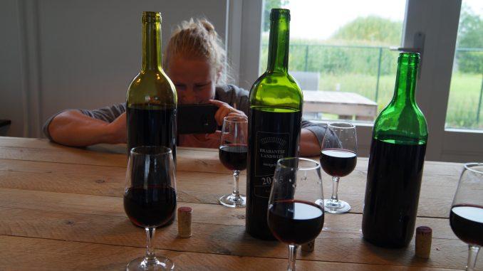 Foto's maken van flessen wijn voor wijn spijs rubriek