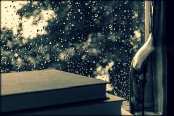 Fensterscheibe Regentropfen Bücher