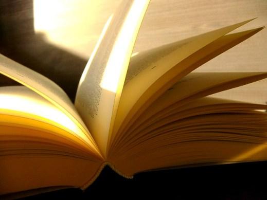 Buch aufgeschlagen Sonnenschein