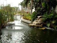 Hübscher Garten am Flughafen Guayaquil
