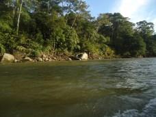 Auf dem Rio Arajuno