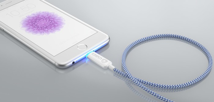 UsBidi Charger – The World's Most Intelligent Charger