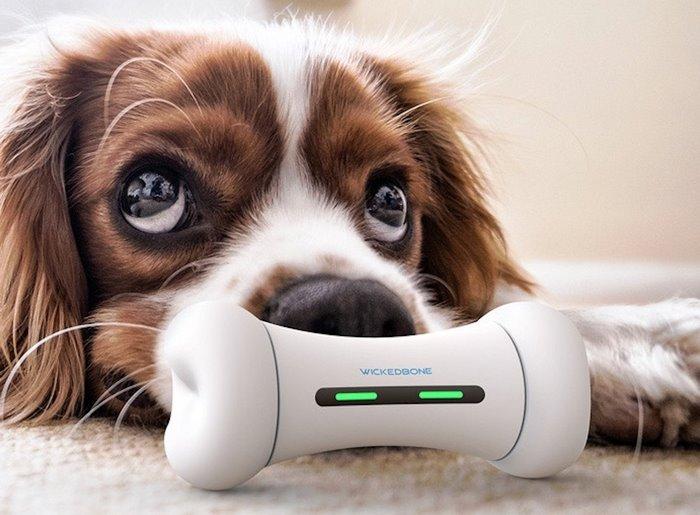 Wickedbone Smart and Interactive Dog Toy