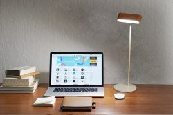 Zenlight-A 360 Degree Portable and Aesthetic Lamp