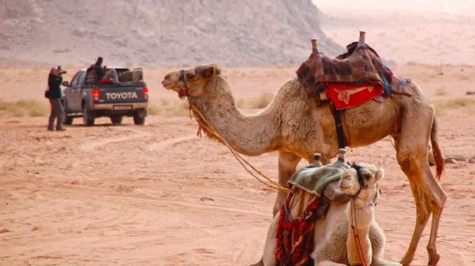 Autofahren in Jordanien