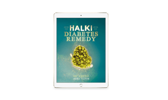 Halki Diabetes Remedy Review – Does This Guide Helps To Heal Diabetes Naturally?