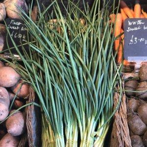 Worton's Finest Spring Onions