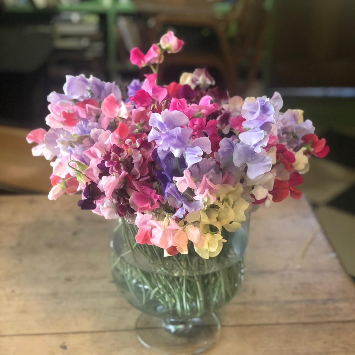 Worton Kitchen Garden sweet peas in a vase