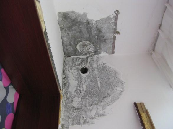 Operation Scrape: no mold (hopefully) to be found.