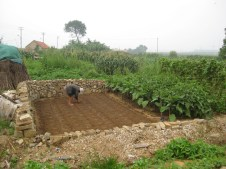 A lone farmer working barefoot on his small plot of land.