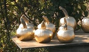 The Golden Pumpkins