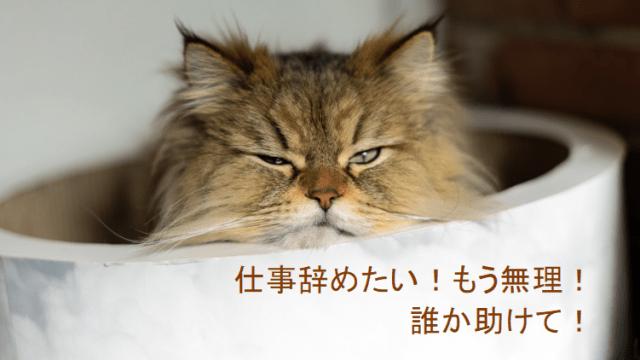 仕事辞めたくてもう無理な猫のイメージ画像