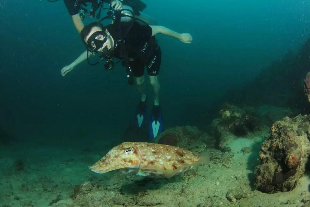 Tim with Kon-tiki diving centre Krabi