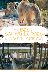 Would Be Traveller The Best South Africa Safari Lodges