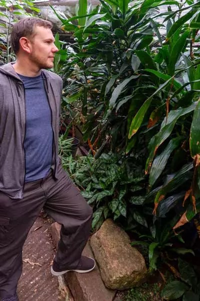 Man wearing Nosilife clothing in rainforest