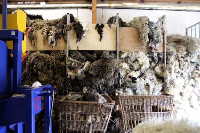 09_fleeces