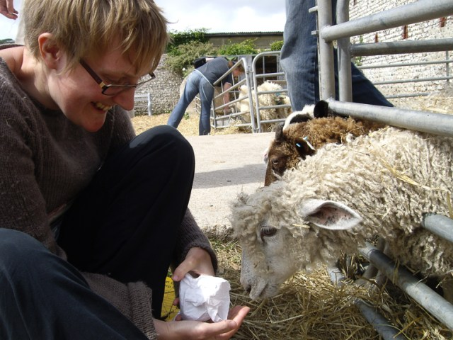 Feeding a Wensleydale lamb at the Seven Sisters Sheep Centre, Sussex, 2009