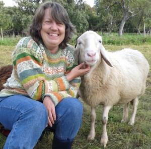 Beate Herold and sheep