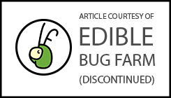 Edible Bug Farm Article