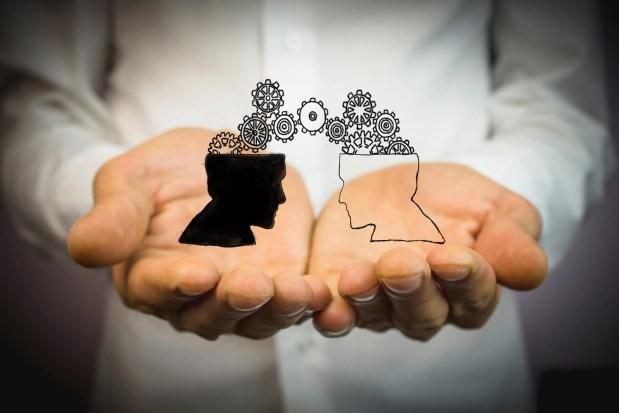 Transfer of social media marketing ideas