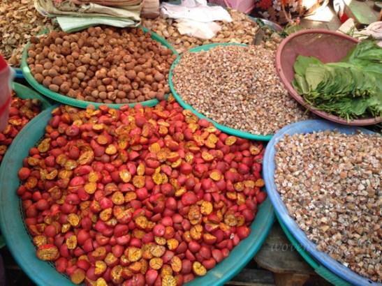 Bagu Burma IMG_5472-2