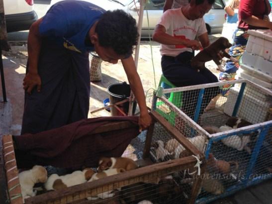 Yangon IMG_5380