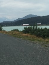 Along Mud Bay Rd on way to cannery