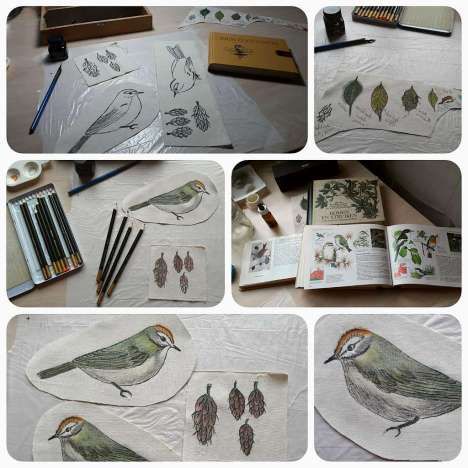 Ineke van Fassen. As a child I often drew pictures out of my father's wildlife books. One bird in particular had my interest and I drew it many times. Inspired by Holly Hart's article in WOWbook 05 I started drawing again. The beginning of a new textile project. Next step Bird project: adding colour.
