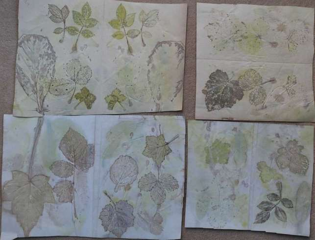 Janice Pound. I have been having some fun with ecodyeing on paper and then outlining with some botanical inks made from boiled onion skins and red cabbage as well as walnut ink. First image is just the printed papers and the other two have been outlined. Eco prints from WOWbook 1 and botanical inks from WOWbook 5.