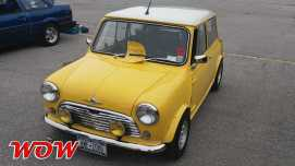 Mini Yellow Front