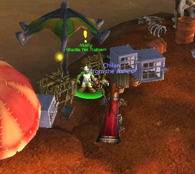 MoP Beta: Healing Your Battle Pets (1/5)