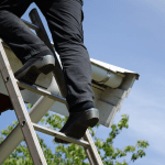 A Detailed Inspection for Roof Rejuvenation