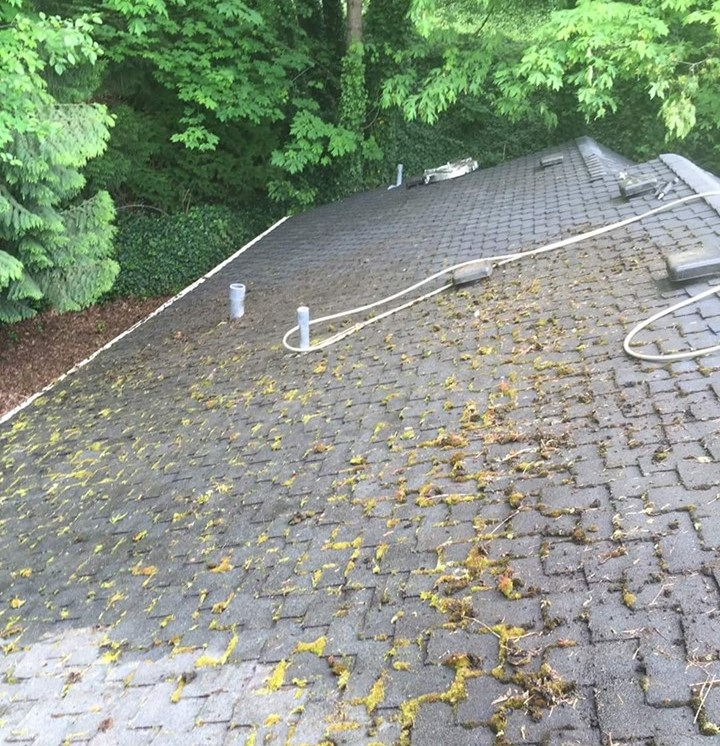 Before Roof Cleaning in Delaware