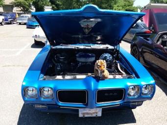 1970 Pontiac GTO - Front