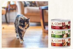 Welnness Natural Pet Food cans and a happy cat