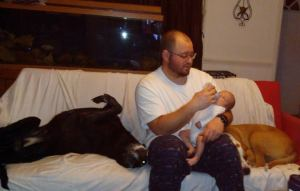 man feeding baby with two dogs snuggled nearby