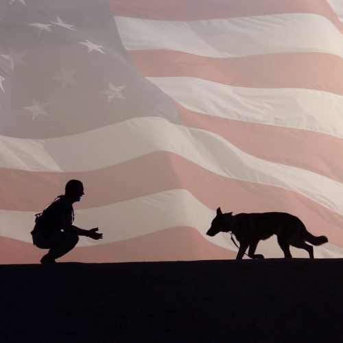 American Humane Veteran And Dog
