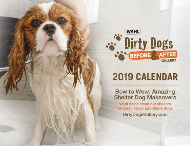 Dirty Dogs Calendar