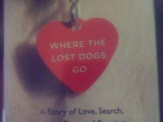 Where the Lost Dogs Go book cover