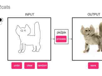 edges2cats cat rendering