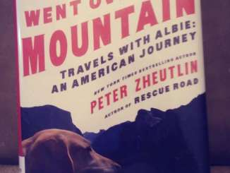 The Dog Went Over The Mountain cover