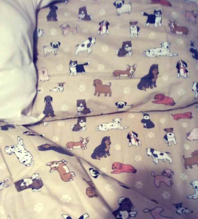Sheets with dogs on them
