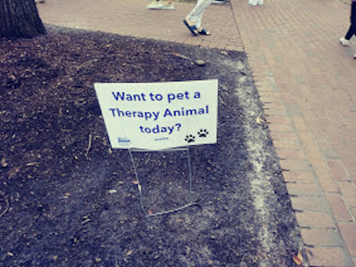 Do you want to pet a therapy animal sign