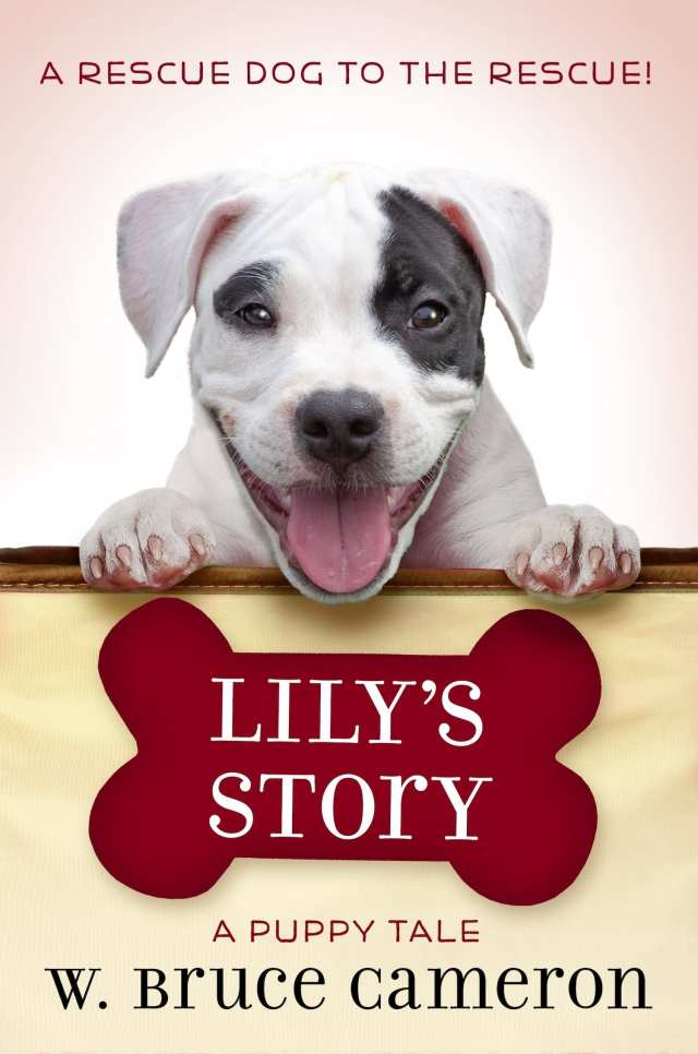 LIly's Story cover