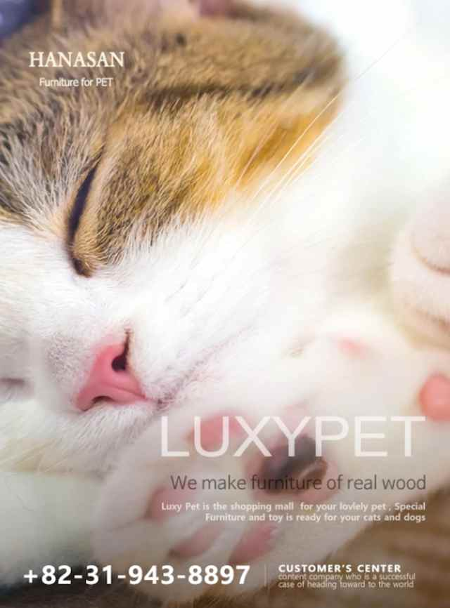 Luxypet ad