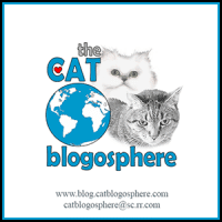 cat blogosphere logo